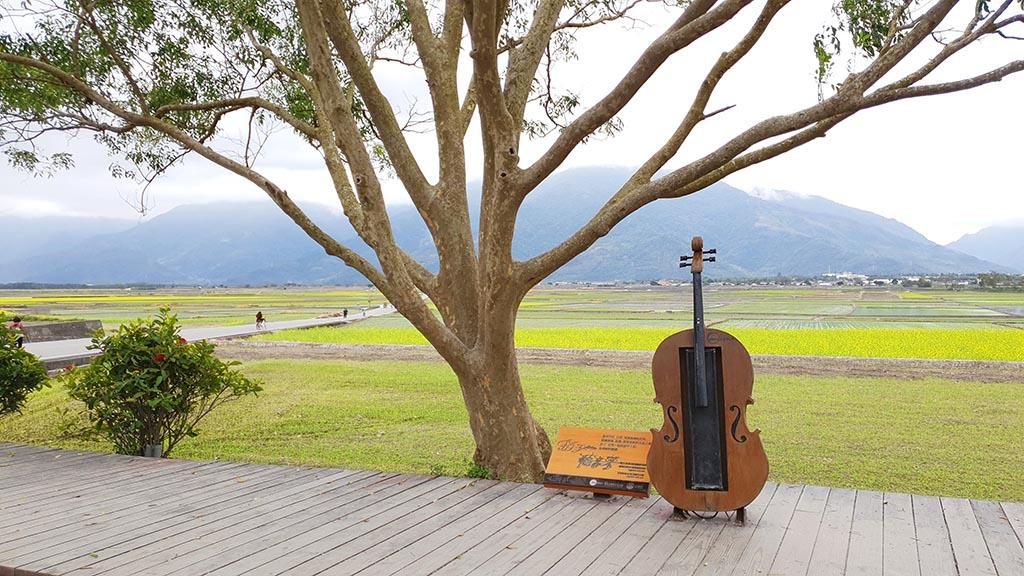 伯朗大道-音樂大提琴